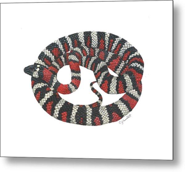 Mountain King Snake Metal Print