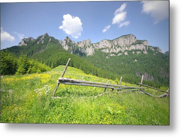 Mountain Landscape  Metal Print by Ioan Panaite