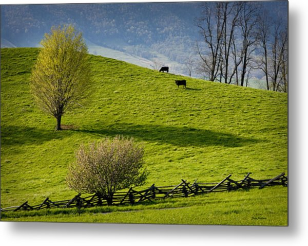Mountain Pasture With Two Cows Metal Print