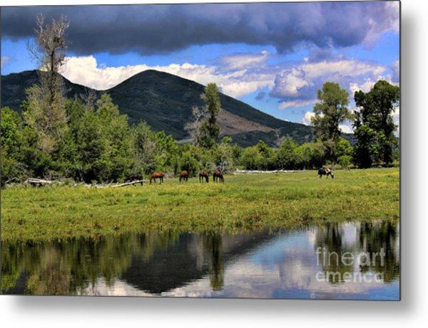 Mountain Pasture Metal Print