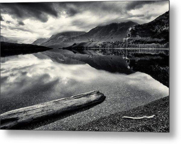 Metal Print featuring the photograph Mountain Prince In Bw 2 by David Buhler