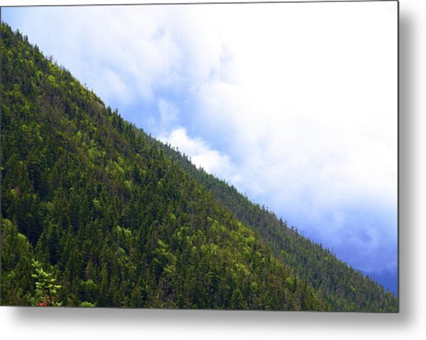 Mountain Side Metal Print