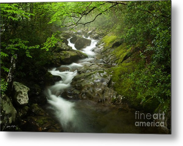 Mountain Stream 2010 Metal Print