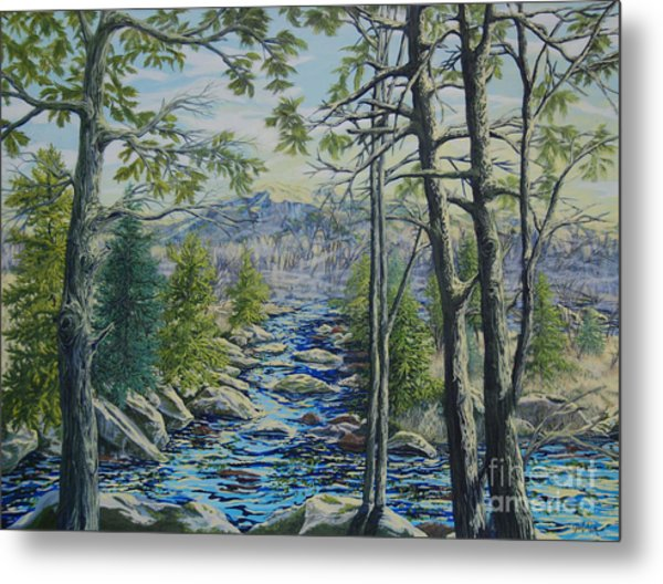 Mountain Stream II Metal Print