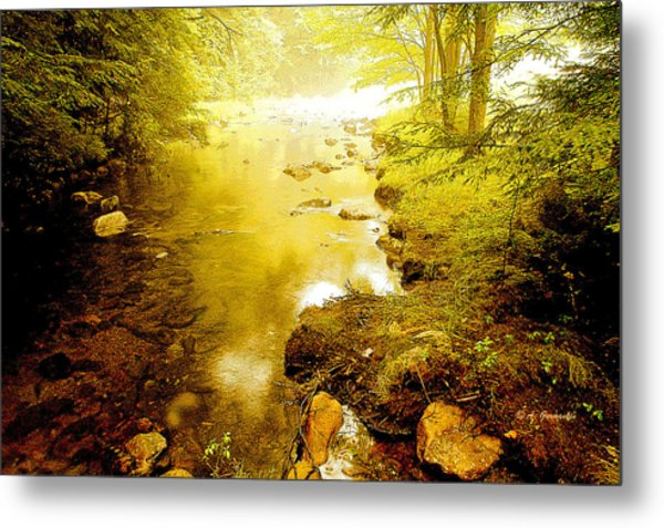 Mountain Stream Summer Metal Print