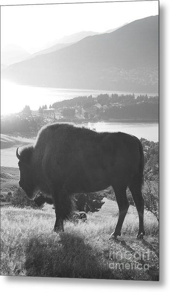 Mountain Wildlife Metal Print