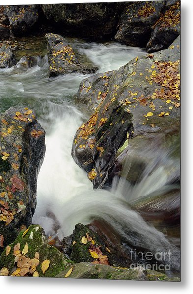 Mountains Stream 2004 Metal Print