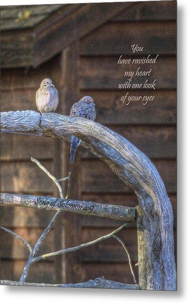 Mourning Doves Metal Print by Cheryl Birkhead