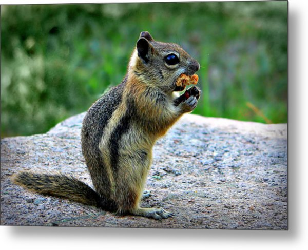 Mouthfull Metal Print