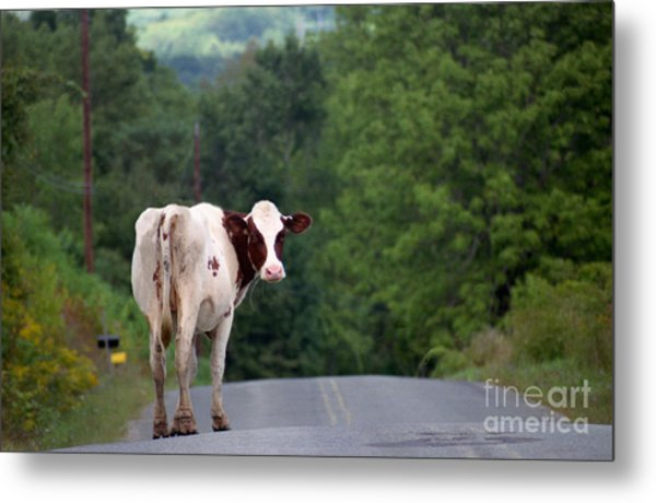 Movin On Down The Road Metal Print