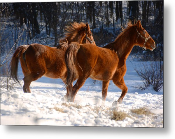 Moving In Motion 2 Metal Print