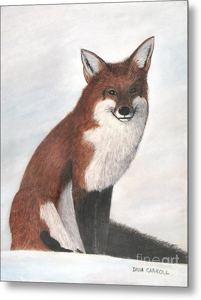 Mr Fox Metal Print by Dana Carroll