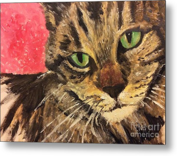 Mr Maowell Metal Print