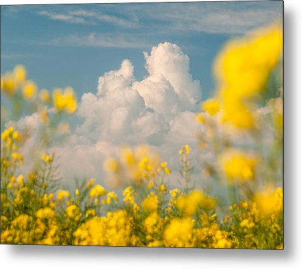 Mt Cloud Metal Print