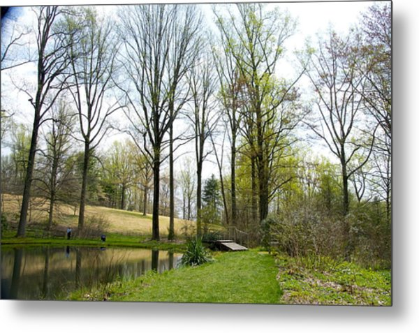 Mt Cuba Pond 2014 Metal Print by Mark Holden