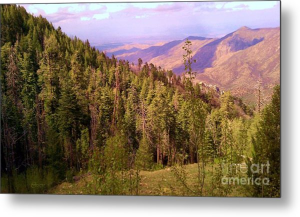 Mt. Lemmon Vista Metal Print
