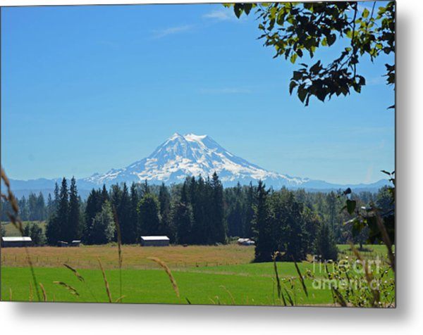 Mt. Rainier From The Western Side Metal Print