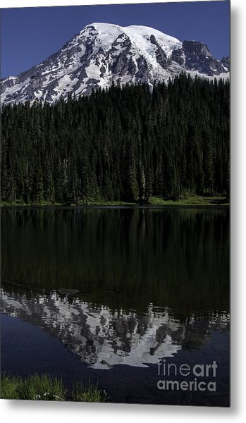 Mt Rainier Reflected In Reflection Lake Metal Print