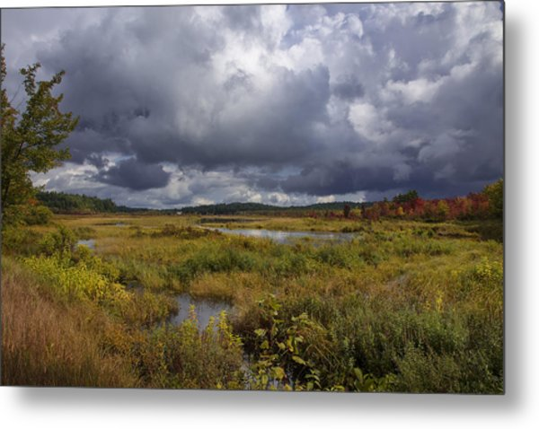 Mud Pond Clouds Metal Print