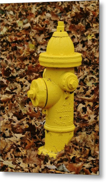 Mueller Fire Hydrant Metal Print