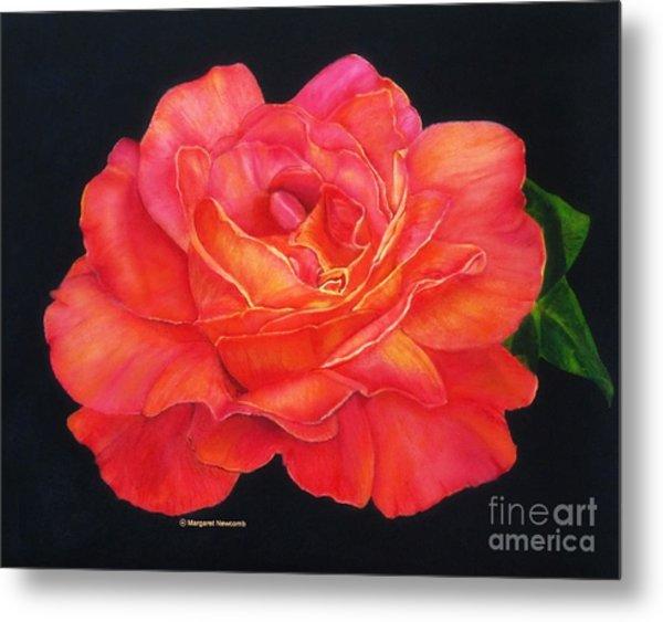 Multi-colored Rose Oils On Canvas - Print Metal Print