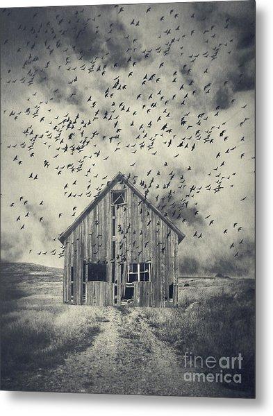 Murder Of Crows Metal Print