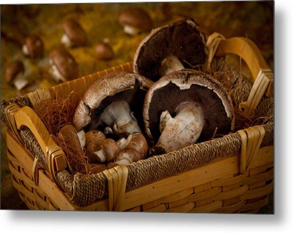 Mushrooms2166 Metal Print
