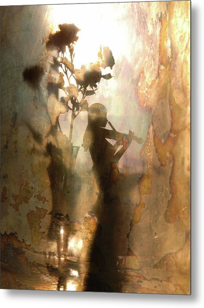 Music Of Light And Shadow Metal Print by Andrey Morozov