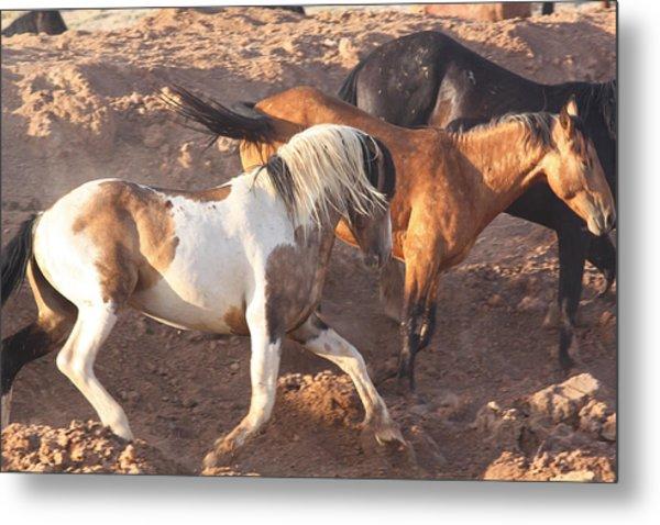 Mustang Action Metal Print