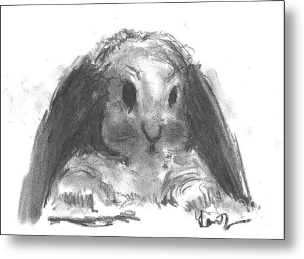 Metal Print featuring the drawing My Baby Bunny by Laurie Lundquist