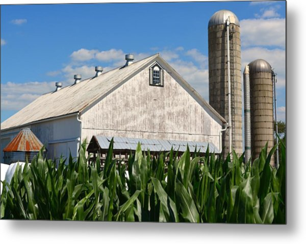 My Favorite Barn In Summer Metal Print