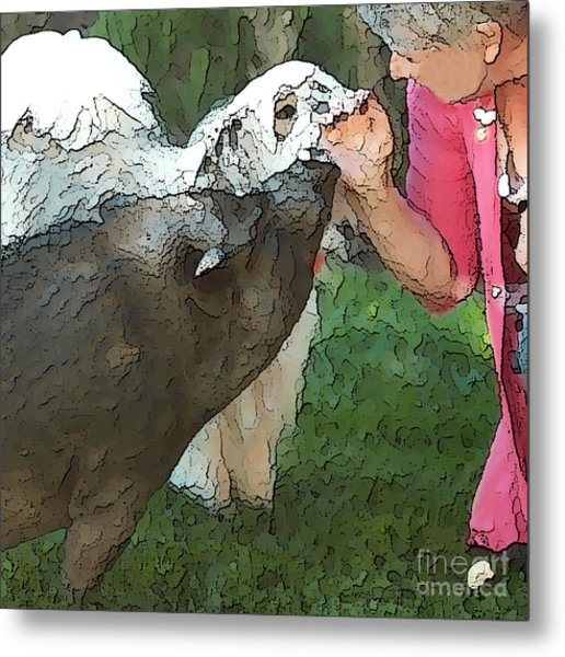 My Pig And Dog Friends Metal Print