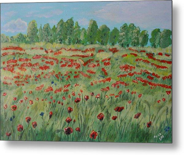 My Poppies Field Metal Print