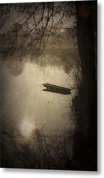 Mysterious Morning Metal Print