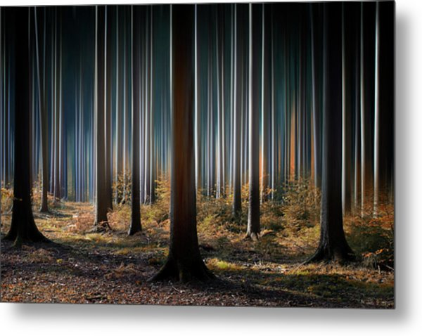Mystic Wood Metal Print