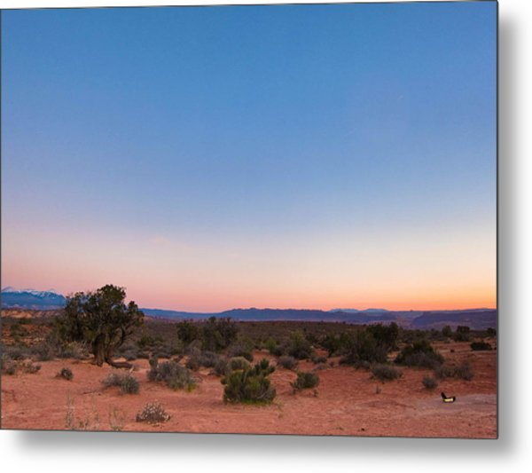 Mystical Colors Metal Print