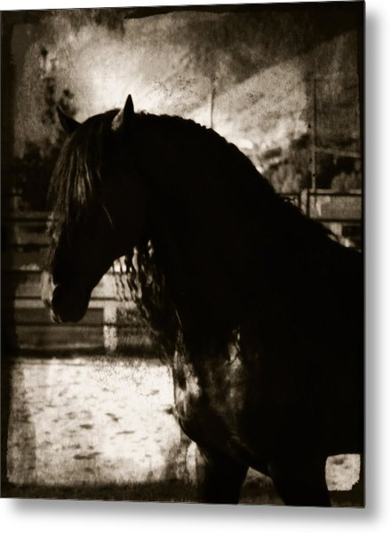 Mystical Friesian Metal Print