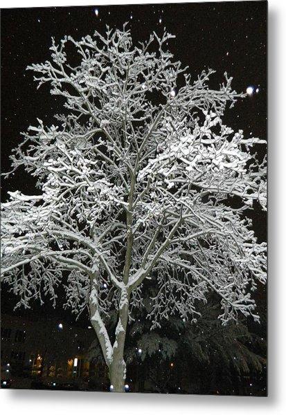 Mystical Winter Beauty Metal Print