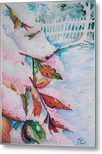 Nandina In Snow Metal Print