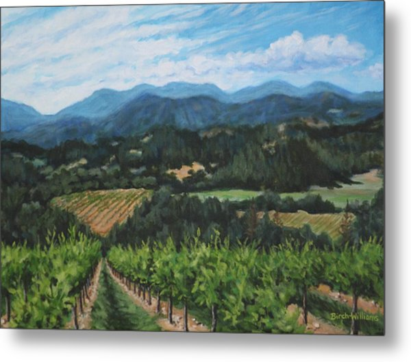 Napa Valley Vineyard Metal Print