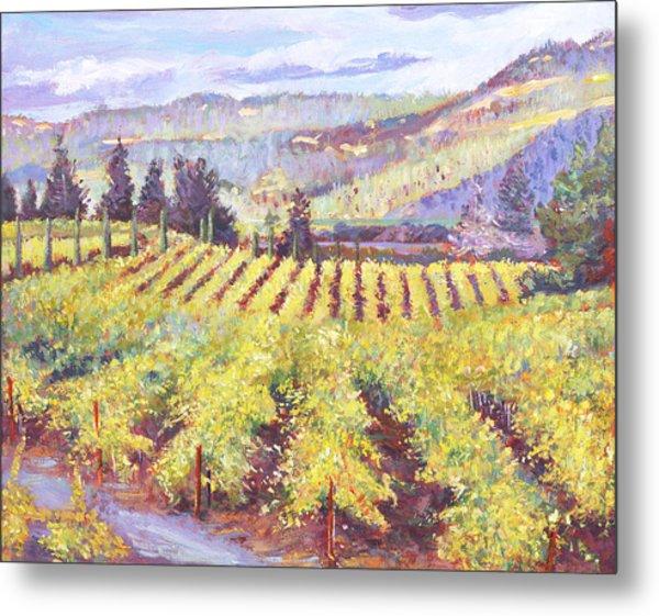 Napa Valley Vineyards Metal Print