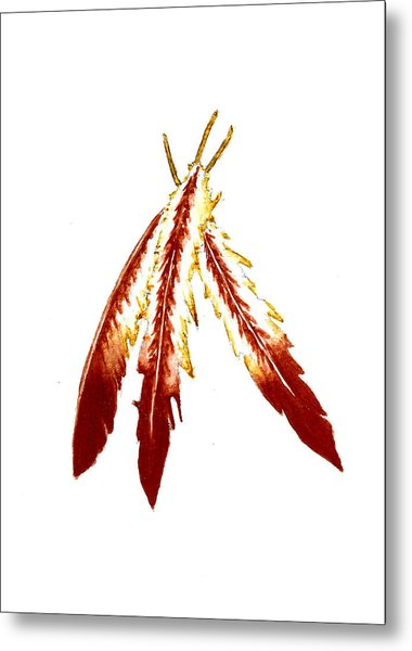 Native American Feathers  Metal Print