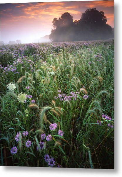 Native Prairie Sunrise Metal Print