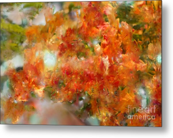 Natural Abstractions #12 The Orange Tree Metal Print