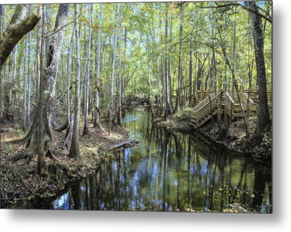 Natural Bridge Springs Metal Print by Frank Feliciano