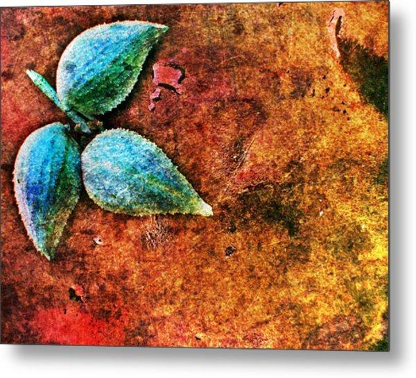 Nature Abstract 17 Metal Print