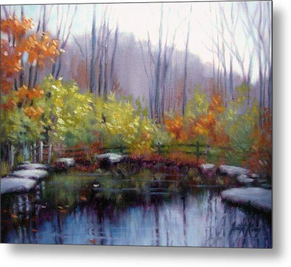 Nature Center Pond At Warner Park In Autumn Metal Print