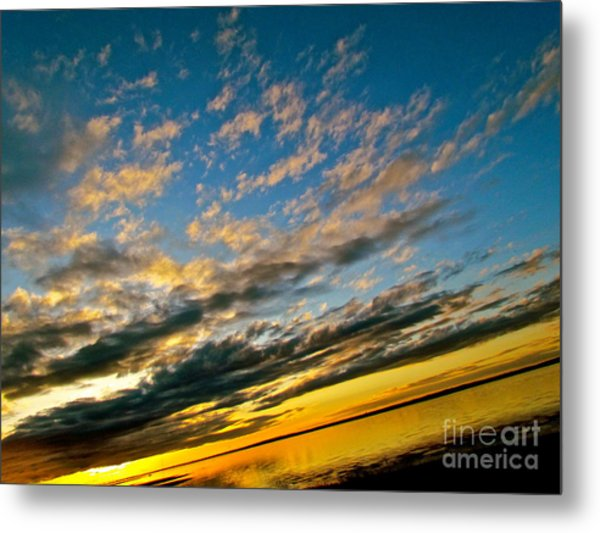 Nature Grasping Metal Print by Q's House of Art ArtandFinePhotography