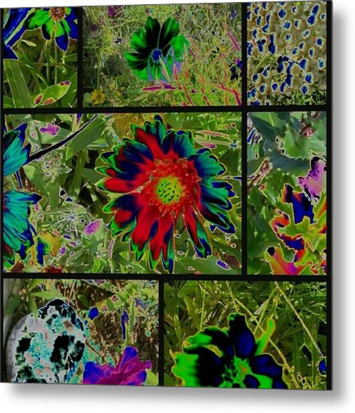 Nature Reprise Metal Print by Thomasina Durkay