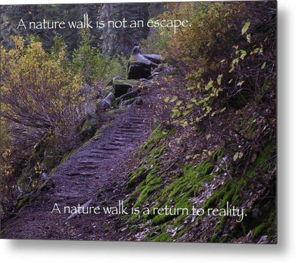 Nature Walk Metal Print by Tom Trimbath